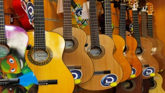 Acoustic guitars from Samick