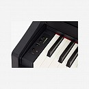 Roland Digital Piano RP102 (Bench Included)