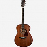 Ibanez Artwood Series Acoustic Guitar AC240-OPN