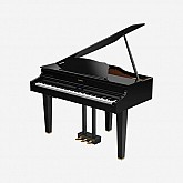 Roland Digital Grand Piano GP607-PE