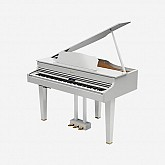 Roland Digital Grand Piano GP607-PW