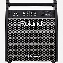Roland Personal Monitor PM-100