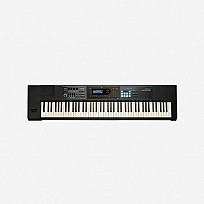 Roland Synthesizer JUNO-DS88