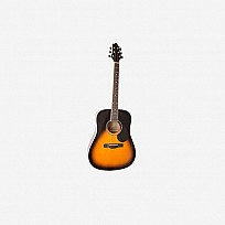 Samick Greg Bennett Acoustic Guitar GD-100S